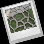 Как украсить возле дома маленький участок и территорию двора