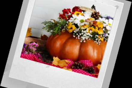 Куда можно поставить цветы для украшения дома?